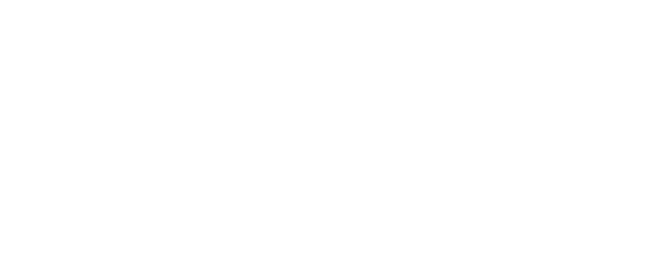 COLLECTIF ENDOGÈNE